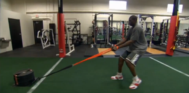 Luol Deng Training Regime