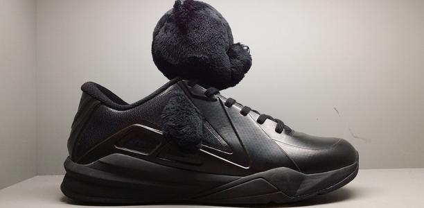 Metta World Peace Panda Shoes