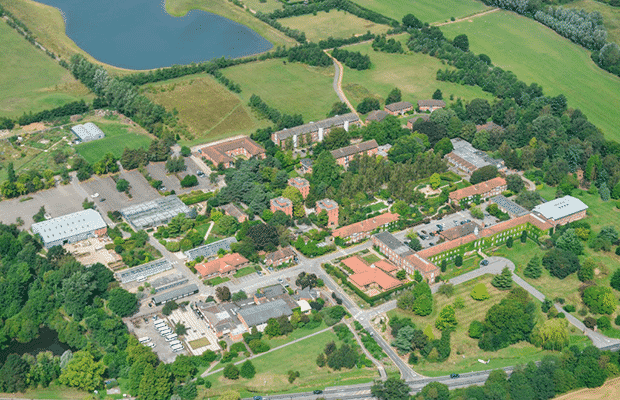 Writtle University College Campus Basketball